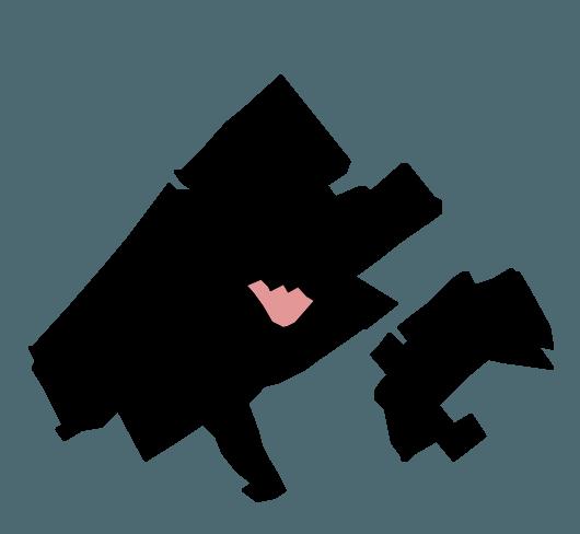 lokatie schilderswijk